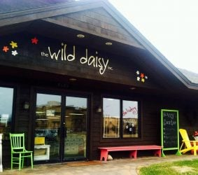 The Wild Daisy - Pequot Lakes, Minnesota